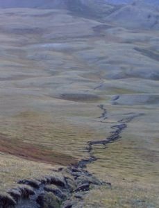 An earthquake rupture preserved in the landscape in Mongolia. Image courtesy of Richard Walker.